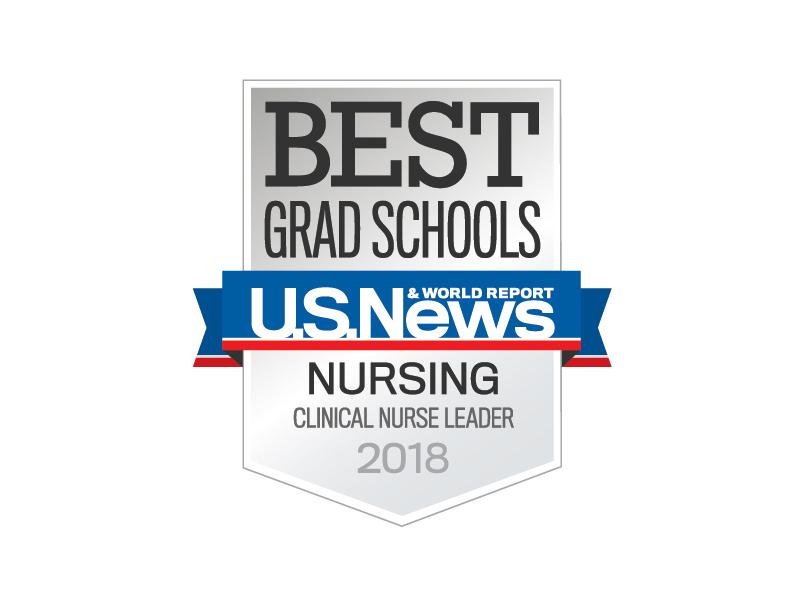 Clinical Nurse Leader Online Program for RNs (MSN)   Rush ...