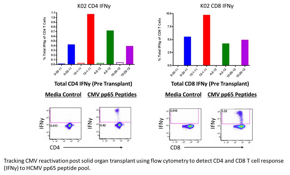 rush flow cytometry core rush core laboratories rush university