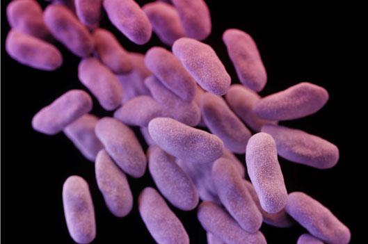 Fighting Superbugs