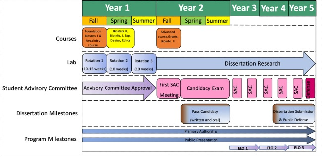 Experiential Learning Opportunities - flow chart, years 1 - 5