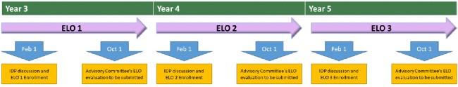 ELO timeline diagram