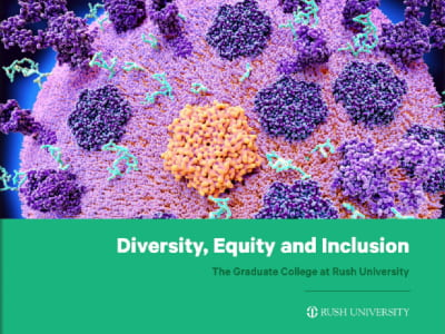 Diversity, Equity and Inclusion brochure cover