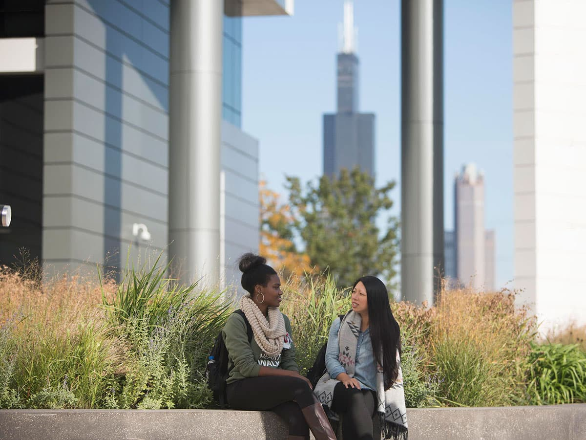 Students sitting outside with Chicago skyline behind them.