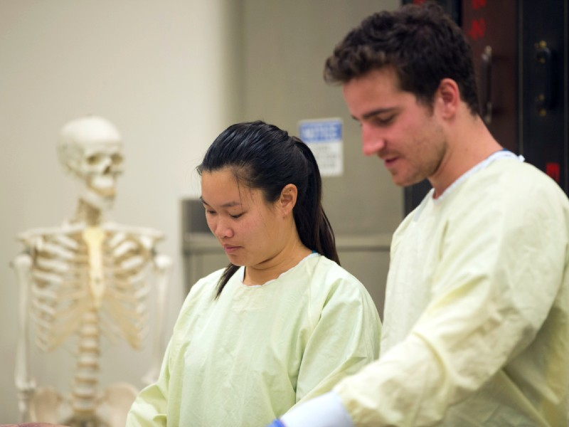 Two students wearing protective gowns with an anatomical skeleton